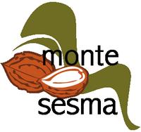 Monte Sesma